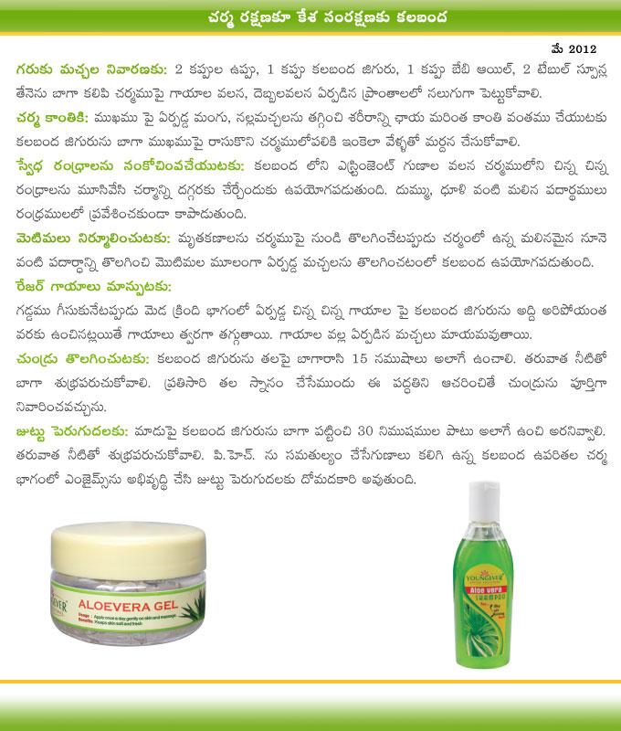 Ayurvedam Telugu Magazine Andaniki Arogyaniki Kalabanda